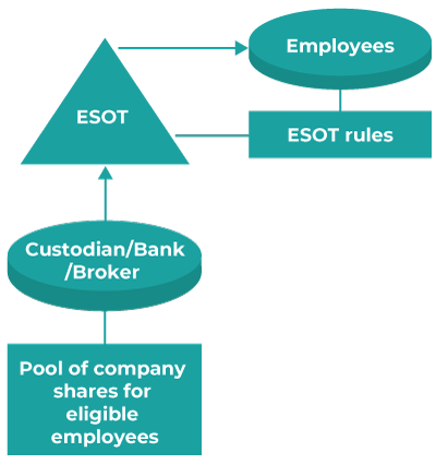 Employee Share or Option Trusts